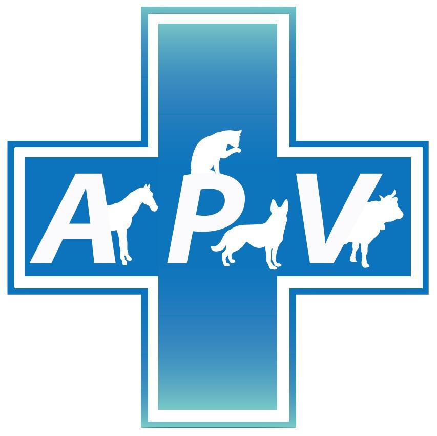 Logo apv png